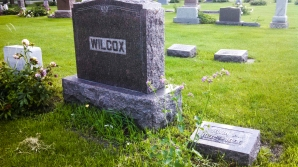 wilcox stone-2